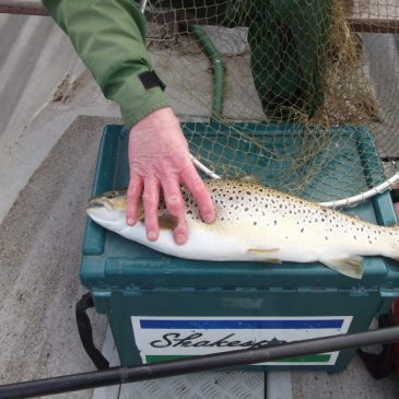 Loch Leven Fishing Report – Week Ending 15th April 2012